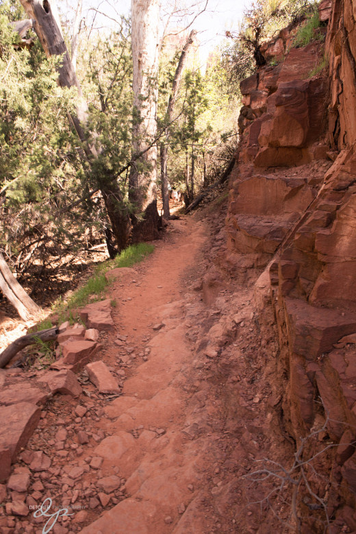 Cathedral Rock hiking - nice trails.  Lucky - no snakes!  :-)